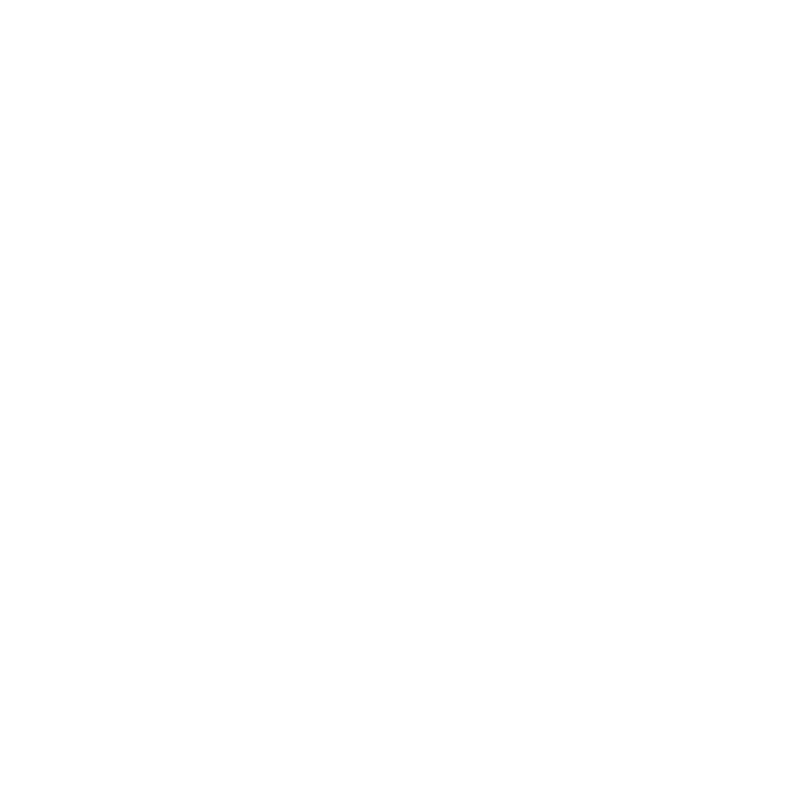 Dog and Dan Handyman